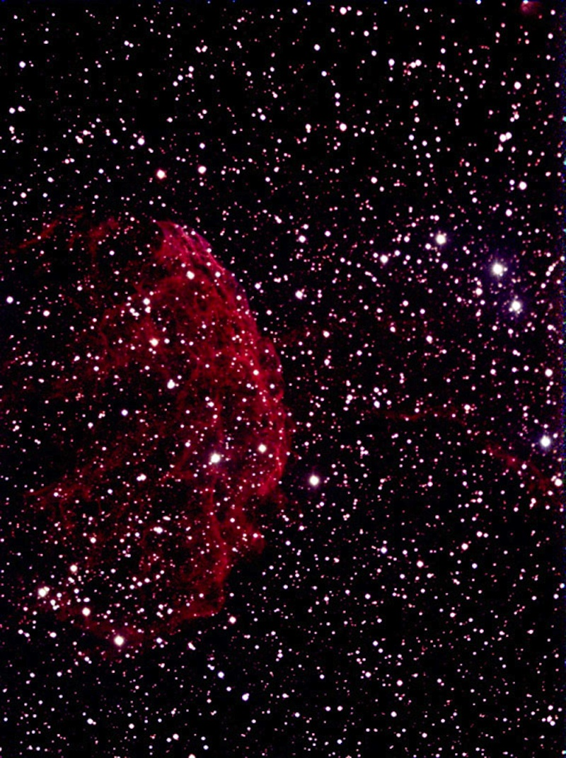 Astrophoto of the Month - Jellyfish Nebula